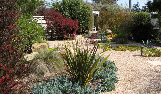 Drought Tolerant Landscaping Ideas The Gardening