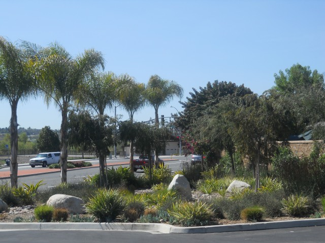 North County Commercial Landscape Maintenance Company