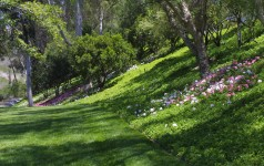 Selecting A Landscaper: Ten Questions To Ask A Prospective Contractor
